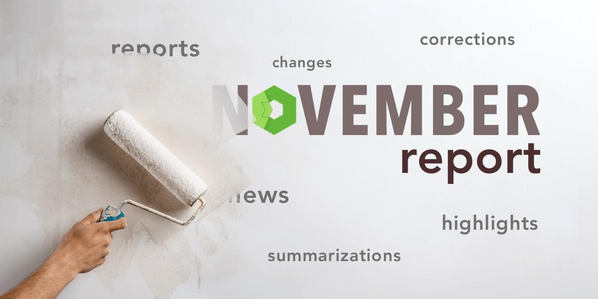 November report 2020